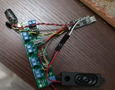 LCDspeaker1.jpg